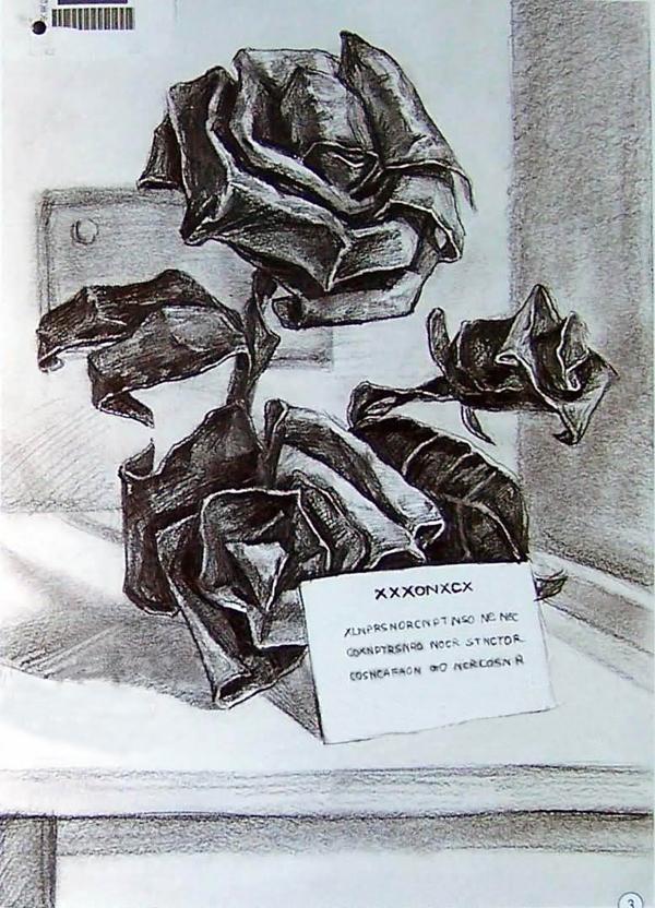 2009年中央美术学院艺术设计素描优秀考卷